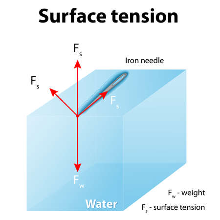 Surface tension. Iron needle stay atop the liquid because of surface tension. If the needle were placed point down on the surface, its weight acting on a smaller area would break the surface, and it would sink. Vektoros illusztráció