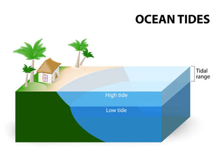 rise: Ocean Tides. Tidal Range. The tidal range is the difference in sea level between low tide and high tide