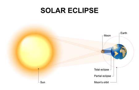 日食は、太陽と地球の間に月が出る時に発生します。月の影は、完全にシャドウの umbra と部分的にシャドウの半影に幾何学によって分けることがで  イラスト・ベクター素材