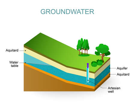 rock layer: Groundwater and Artesian aquifer. Water table