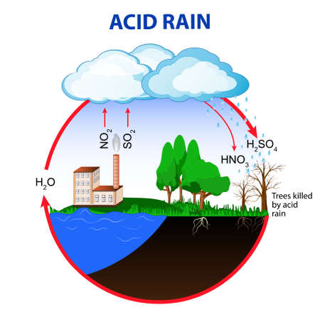 Acid rain is caused by emissions of sulfur dioxide and nitrogen oxide, which react with the water molecules in the atmosphere to produce acids. Illustration