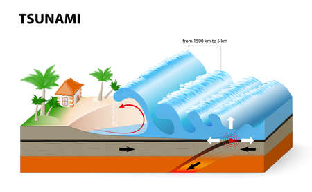 A tsunami is a series of huge waves. It washes against the coast several times with great speed and force. Tsunamis generated by submarine earthquakes travel at subsonic speed across the ocean surface.