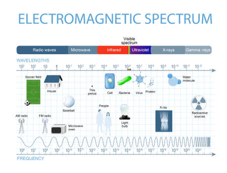 Electromagnetic Spectrum. The spectrum of waves includes infrared rays,  visible light, ultraviolet rays, and X-rays. Human eyes are only sensitive to the range that is between wavelength 780 nanometers and 380 nanometers in length. Stock Illustratie