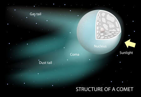 gently: structure of a comet. Diagram showing the nucleus, coma and tails. The dust tail is gently curved. it is rich in microscopic dust particles that reflect sunlight. Ion tail is composed of gases broken apart by the Suns ultraviolet radiation