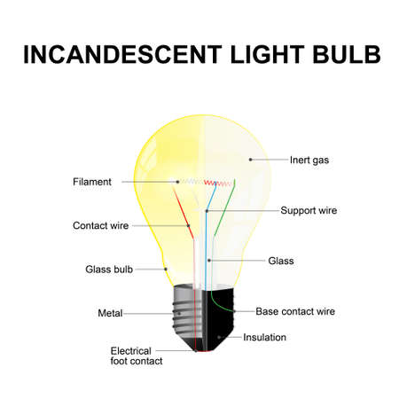 Diagram showing the parts of a modern incandescent light bulb. labeled