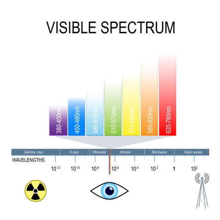Visible spectrum and invisible light. Human eyes are only sensitive to the range that is between wavelength 780 nanometers and 380 nanometers in length.