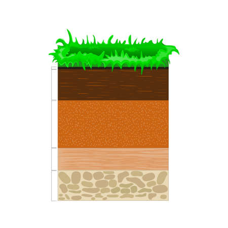 soil profile and horizons. Vector illustration flat design Vettoriali