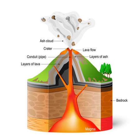 Przekrój wulkanu. Program erupcji na białym tle. Wektor Infograficzny