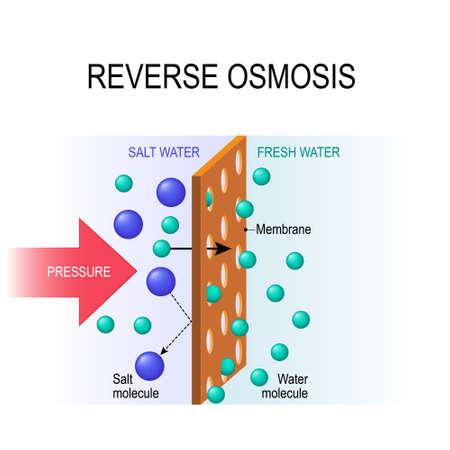 osmosis inversa. Desalinización. Las moléculas de agua a presión se filtran a través de la membrana semipermeable.