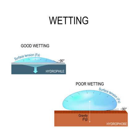 Humectación y tensión superficial para el agua. hidrofílica e hidrófoba. Mala humectación y buena humectación de la superficie. Ilustración de vector