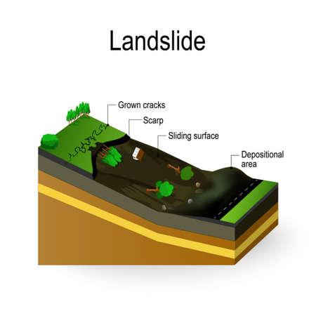 산사태 다이어그램. 토양 유출은 중력 과정이나 인공적 요인에 대한 대처로 경사면을 뒤덮은 파편 흐름입니다. 일러스트