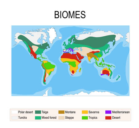 Biomes. Terrestrial ecosystem is a community of living organisms. Biotope: montane, desert, tropics, savanna, steppe, mediterranean, mixed forest, taiga, tundra and polar desert. Vector map Illustration