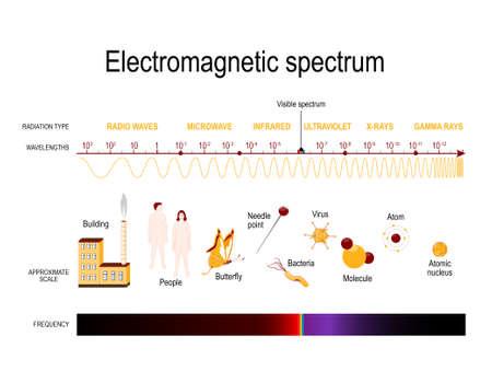 Diagramm des elektromagnetischen Spektrums. Abbildung mit verschiedenen Eigenschaften über den Frequenz- und Wellenlängenbereich Vektorgrafik