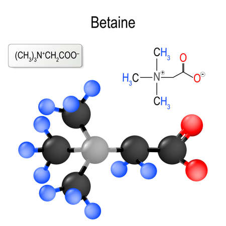 Betaine. Structure of a molecule. chemical formula and model of the betaine molecule. vector illustration for medical, educational and science use