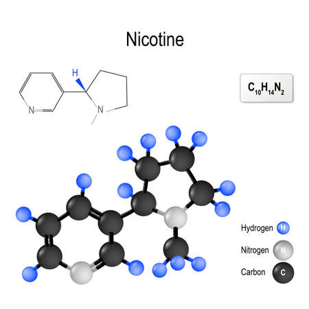 Nicotine (Nicorette, Nicotrol). Structure of a molecule. chemical formula and model of the Nicotine molecule. vector illustration for medical, educational and science use