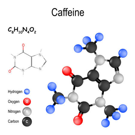Caffeine is stimulant of a central nervous system (CNS). psychoactive drug. Structure of a molecule. chemical formula and model of the Caffeine molecule. vector illustration for medical, educational and science use