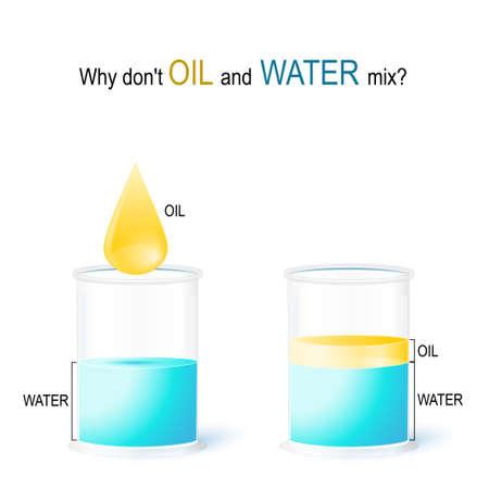 Schulexperiment: Warum mischen sich ÖL und WASSER nicht? Vektorillustration für Bildungs- und Wissenschaftsgebrauch. Wasser und Öl - Flüssigkeiten, die normalerweise nicht mischbar sind (nicht mischbar oder nicht mischbar). weil ihre Moleküle unterschiedlich gepackt sind. Wasser ist ein polares Molekül: Die Wassermoleküle haften aneinander. Öl besteht aus unpolaren Molekülen.