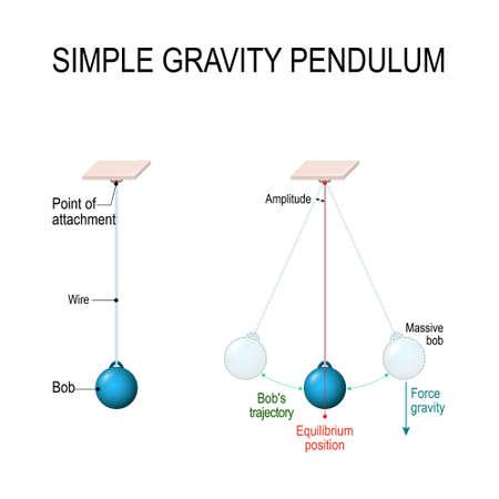 Eenvoudige zwaartekrachtslinger. Behoud van energie. Wanneer de slinger naar de gemiddelde positie beweegt, wordt de potentiële energie omgezet in kinetische energie. Vectordiagram voor educatief en wetenschappelijk gebruik
