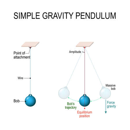 Simple gravity pendulum. Conservation of energy. When pendulum moving towards the mean position the potential energy is converted to kinetic energy. Vector diagram for educational, and science use