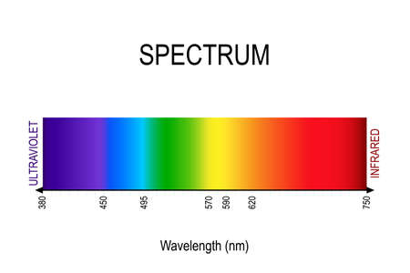 spectrum. visible light, infrared, and ultraviolet. electromagnetic radiation. sunlight color. different types of electromagnetic radiation by their wavelengths. In order of increasing frequency and decreasing wavelength Ilustração