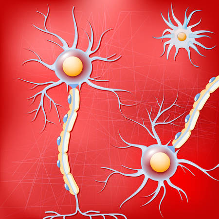 Neurons and glial cells on red background. Brain neurons before Alzheimer's disease, without amyloid plaques. Vector pattern for your design, biological, science, medical and educational use.