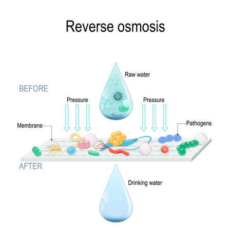 reverse osmosis use the membrane to act like an extremely fine filter to create drinking water from contaminated water. Pressure forcing water molecules through the membrane. pathogens are larger than membrane openings. Vector illustration for science and educational use.  イラスト・ベクター素材