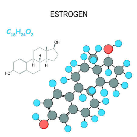 Estrogen (oestrogen, estrone, estradiol, estriol) is the primary female sex hormone.  Chemical structural formula and model of molecule. C18H24O2. Vector diagram for educational, medical, biological, and scientific use