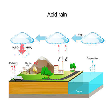 Acid rain is caused by emissions of sulfur dioxide and nitrogen oxide, which react with the water molecules in the atmosphere to produce acids. Ilustração