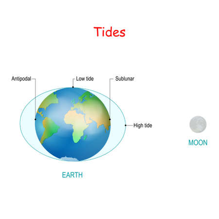 Tides depend where the sun and moon are relative to the Earth. Gravity and inertia creating tidal bulges on opposite sides of the planet. High and low tides. water ??level Stock Illustratie