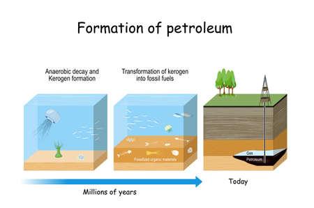 Bildung von Erdöl. Öl- und Gasbildung. fossiler Brennstoff, der aus alten fossilen organischen Materialien gewonnen wird.