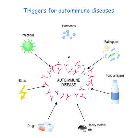 triggers for autoimmune diseases. The immune system to produce antibodies that attack and cause damage to the other cells. Vector illustration for educational and medical use Illustration
