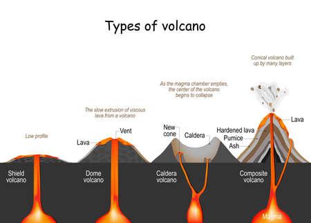 volcano type (shield, dome, composite, and caldera). infographic. vector illustration Vecteurs