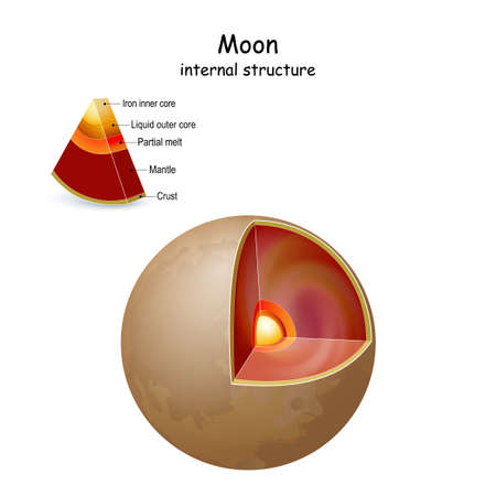 Moon internal structure and Interior. cross section of natural satellite of Earth from core to mantle and crust. infographics. vector diagram. Easy to edit