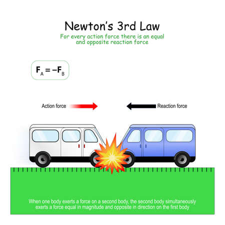 Newton's 3rd Law: For every action force there is an equal and opposite reaction force. Both cars have the same mass, their forces is equal. Both cars stop at the spot of the collision. Vectores