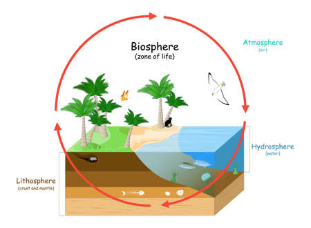 Biosphere is a zone of life on Earth. natural ecosystems with wildlife. Ecosphere (environment), Hydrosphere (water), Atmosphere (air), and Lithosphere (crust and the portion of the upper mantle).