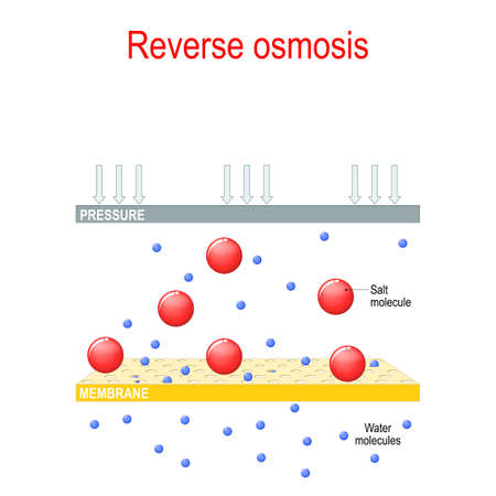 reverse osmosis. the principle of reverse osmosis. Desalination plant. chemical experiment. Vector diagram for educational, science, and physics use