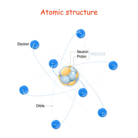 Atomic Structure. For example carbon atom. Nucleus with protons and neutrons, orbits of electrons. Vector illustration for educational, and science use.