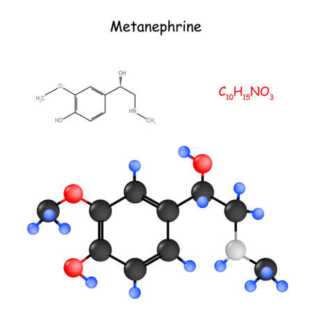 Metanephrine is a metabolite of epinephrine (adrenaline). Chemical structural formula and model of molecule. metadrenaline use for diagnosis of pheochromocytoma (adrenal medullary neoplasm) Иллюстрация