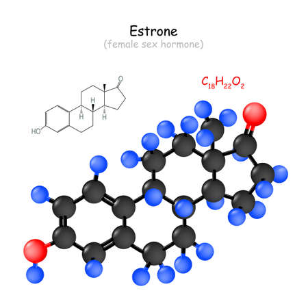 Estrone. female sex hormone. Chemical structural formula and model of Oestrone molecule. Vector Illustration