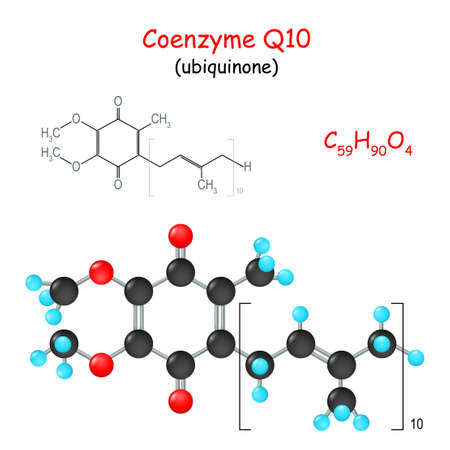 Coenzyme Q10. Chemical structural formula and model of molecule of ubiquinone. Vector Illustration