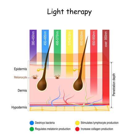 Light therapy. phototherapy of the skin. heliotherapy treatment for seasonal affective disorder (SAD). skin and specific wavelengths. using polychromatic polarized light for skincare. Vector illustration