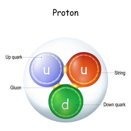 Structure of a gluon. elementary particle that