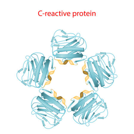C-reactive protein is a inflammation and infection biomarker in blood plasma. Molecular structure. Vector illustration