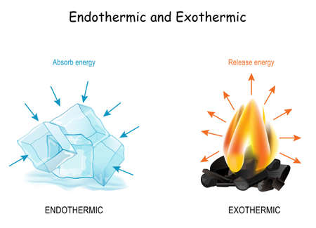 Endothermic and Exothermic chemical reactions. Cold cubes of ice Absorb energy, and hot fire releases energy. Poster for Distance Learning of chemistry and physics