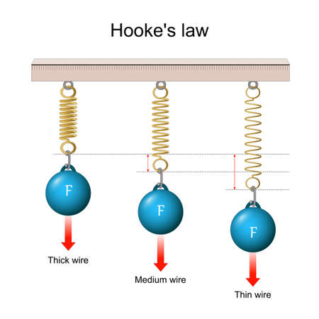Hooke's law. the force is proportional to the extension. from a Thin wire to a Thick wire. vector illustration
