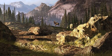 Elk near a stream in a Rocky Mountain landscape.