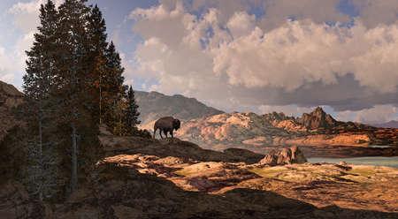 Buffalo overlooking a Rocky Mountain landscape. Stock Photo