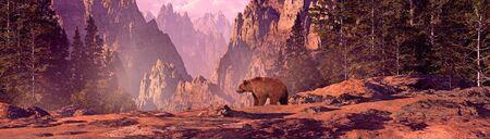 Grizzly bear in a Colorado Rocky Mountain landscape.