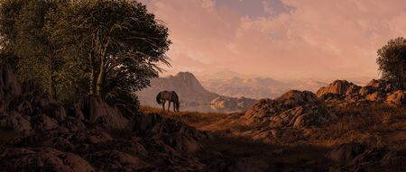 Horse grazing in the evening light in a Southwest landscape scene. Stock Photo