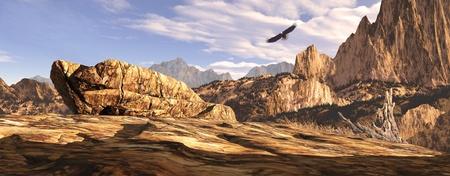 soaring: Bald eagle soaring above a Southwest landscape. Stock Photo